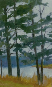 Autumn Pines, en plein air oil painting, New Jersey