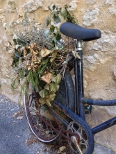 Bicycle and dried flowers, Viens, France 2014