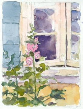 Hollyhocks and window, Les Bassacs, France 2014 - watercolor sketchbook drawing