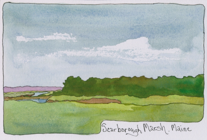 DPW-Scarborough-Marsh-Maine-ink-watercolor-en-plein-air-chris-carter-artist-062113