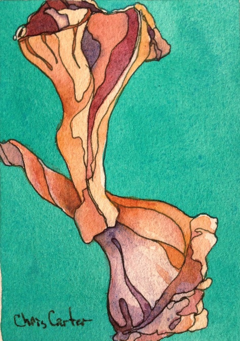 DPW-Seashells-3-myrtle-beach-sc-ink-watercolor-chris-carter-artist-052913