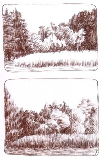 Field and Trees - en plein air ink drawing - NJ 2011