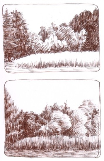 Field and Trees - en plein air ink drawing - NJ 2011