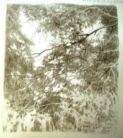 Light Through the Trees - pencil sketch 2010