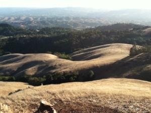 Mount Diablo's undulating hills