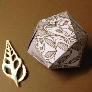 Seashell-icosahedron-ink-drawing-chris-carter-artist-jan-2014